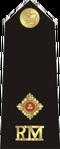RM OFD