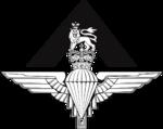 British Army Pathfinder Platoon Logo