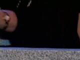 Stephanie Girardi