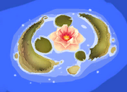 Water Lily Island Map