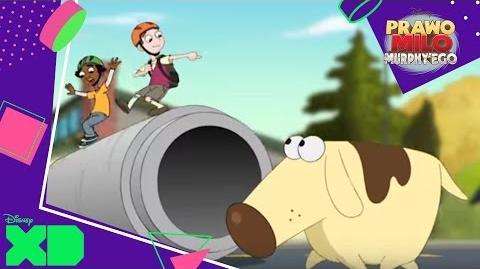 Prawo Milo Murphy'ego - Profil postaci Diogee. Oglądaj w Disney XD!-0