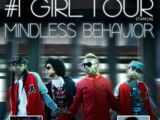 Number 1 Girl Tour