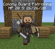 Guard Patrolling