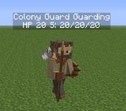 Guard Guarding