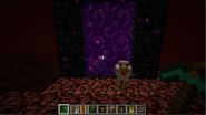 Duck-at-nether-portal