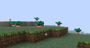 Verdura gysahl en el suelo