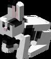 Black & White Rabbit