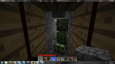 Pet creeper