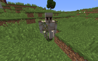 Villager Golem Looking At Me