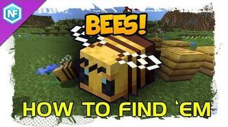 How to find bees Minecraft survival Tutorial