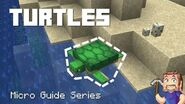Turtles - Minecraft Micro Guide