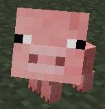 Mała świnia w grze