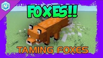 How To Tame Foxes in Survival Minecraft