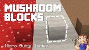 Mushroom Blocks - Minecraft Micro Guide