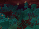 Warped Forest