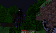 307px-Enderman with rose