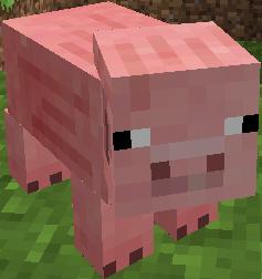 Pig Minecraft Wiki Fandom Powered By Wikia