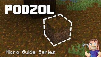 Podzol - Minecraft Micro Guide