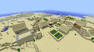 NPC Desert Village