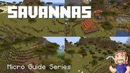 Savanna - Minecraft Micro Guide
