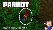Parrot - Minecraft Micro Guide