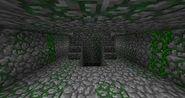 Jungle Temple Inside
