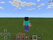 Steve With A Grass Block