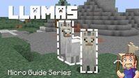 Llama - Minecraft Micro Guide