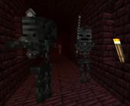 Mroczne Szkielety w Netherowych fotecach