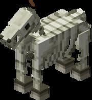 200px-Szkielet koń