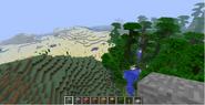 Minecraft-Overworld