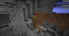 Rośliny w jaskini