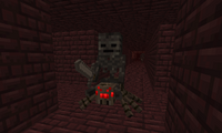 A glitch where a Wither Skeleton rides a Spider.