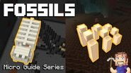 Fossils - Minecraft Micro Guide-0