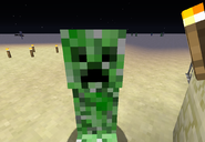 A Creeper next to a torch, the desert illuminated in the background