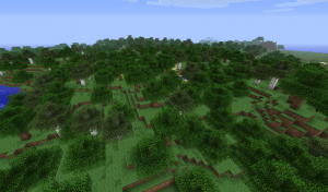 Biomes Forest
