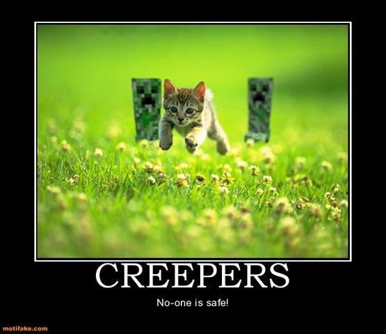 File:Creepers-minecraft-creeper-cat-boom-demotivational-posters-1296392280.jpg