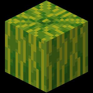Melon Minecraft Wiki Fandom Powered By Wikia