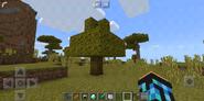 Jungle Tree in SavannaZ