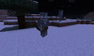 800px-Ragged Skeleton