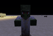 A Zombie Villager