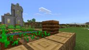 Compost farmB