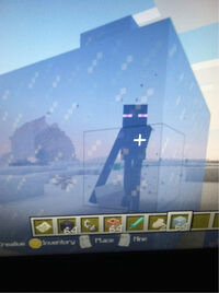 Enderman trap in Ice.