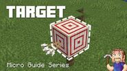 Target - Minecraft Micro Guide