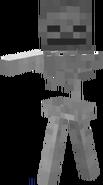 Skeleton-1-