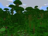 Jungle Biome