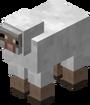 150px-Mouton blanc
