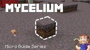 Mycelium - Minecraft Micro Guide (56 seconds)