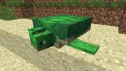 TurtleAndBaby