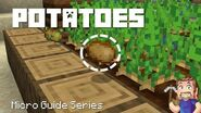 Potatoes - Minecraft Micro Guide